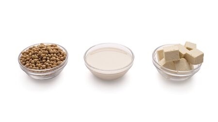 Vegetable protein replaces meat and milk. Soy beans, soy milk, tofu cheese slices free space