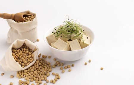 Healthy diet, vegan food, veggie protein sources. Tofu and Microgreens