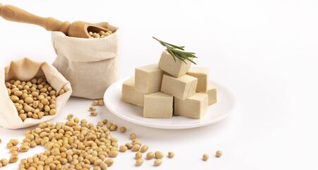 Tofu cheese from asian cuisine is a healthy product for vegans