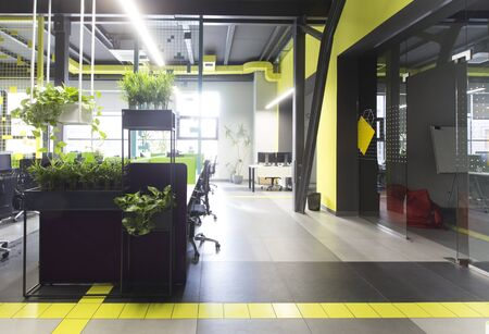 Co-working office in loft style with green live plants, no workers, unemployment, quarantine