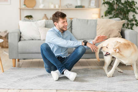 Leisure Time. Handsome man playing with his dog in living room, sitting on the floor