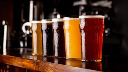 Many varieties of craft beer. Misted glass goblets with ale, lager, dark, light and unfiltered drink on wooden bar, close up, panorama