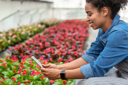 Smiling african american girl gardener making photo on tablet on plantation of red flowers, side view, close up, free space