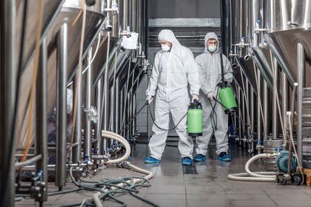 Cleaning and disinfection of equipment. Two men in protective suits and masks and spray bag work at plant, free space