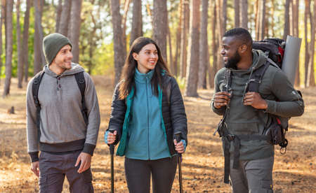 Multiracial group of hikers with backpacks walking by forest, having conversation