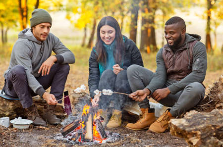 Joyful international friends frying marshmallow on sticks and talking at forest, camping together Stockfoto