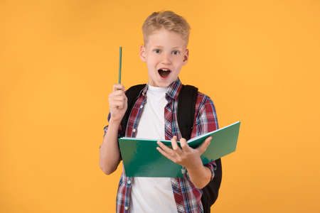 Idea Concept. Excited Schoolboy Raising Pencil Up, Having Eureka Moment, Standing With Notebook, Banner Stock Photo