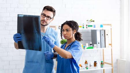 Veterinary radiology. Vet doctor with nurse examining animal xray at hospital, copy space. Panorama