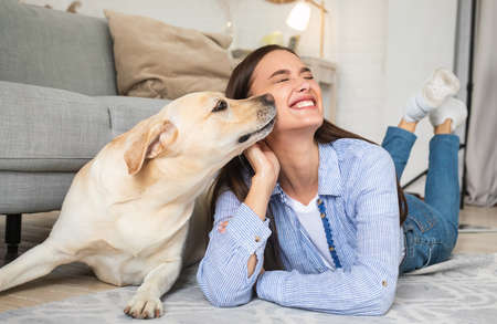 Best Friend Concept. Portrait of golden retriever sniffing womans face and cheek. Affection And Love For Animal. Lady lying on the floor carpet and having fun together with her pet in living room