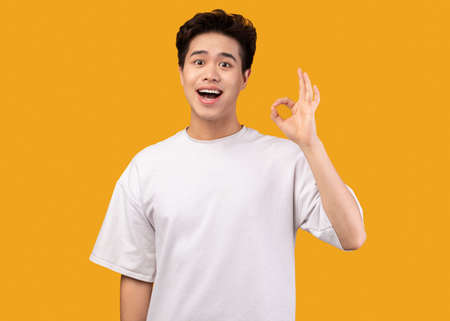 Im Fine. Portrait of happy excited asian guy doing approval ok gesture with fingers, smiling, showing that he is okay, isolated over orange studio background. Confident positive teen is cool