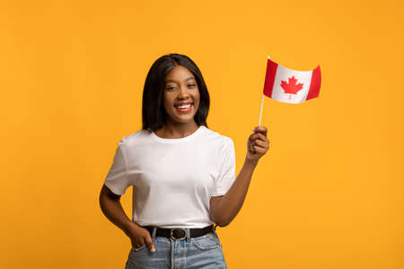 Happy yougn black woman in white t-shirt showing canadian flag, yellow studio background, copy space. Smiling african american lady with flag of Canada. Immigration to Canada concept Banco de Imagens
