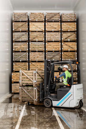 Modern warehouse, work on forklift, industry and organic agribusiness