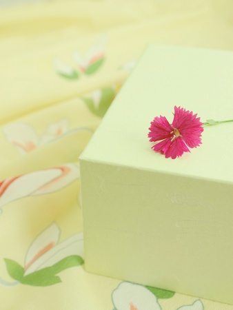 kimono gift Stock Photo - 11601672