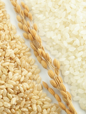 japonica rice Stock Photo