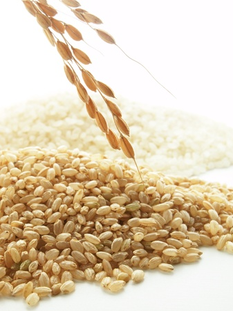 reaping: japonica rice Stock Photo
