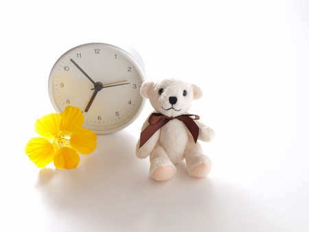 teddy bear, clock, and flower