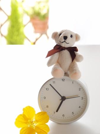 teddy bear, clock, and flower photo