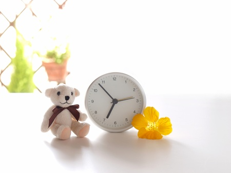 stuffed animals: teddy bear, clock, and flower