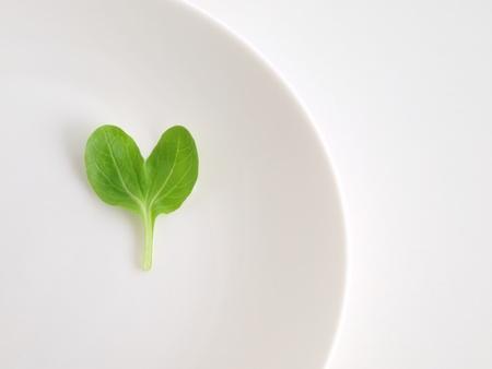 heart pino green photo