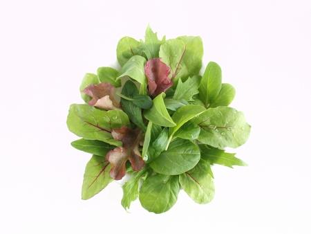 greens: baby leaf salad