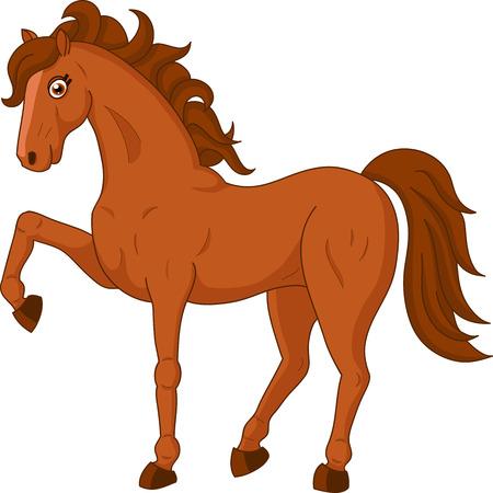 buckskin horse: Illustration of a cute horse on white background