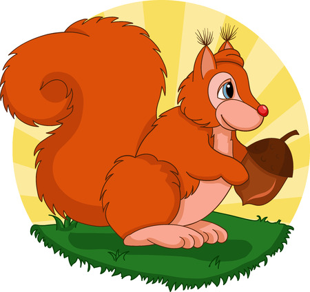 acorn squirrel: Illustration of cute squirrel with acorn standing on grass Illustration