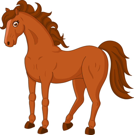 brown horse: Illustration of brown horse on white background