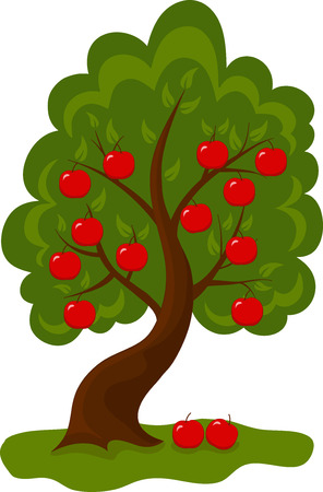 apple red: Illustration of tree with apples on white background