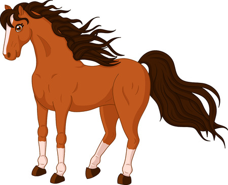 illustration of a beautiful standing horse on white background