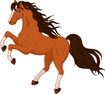 brown horse: illustration of a beautiful horse on white background