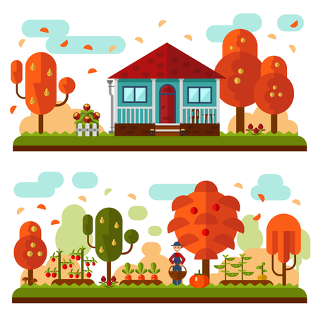 apple cartoon: Vector flat illustration of autumn landscapes. Blue house with red roof and terrace, flowers. Garden with apple, pear trees, beds of carrots, peas, tomatoes, pumpkin, turnip. Gardener with a basket.