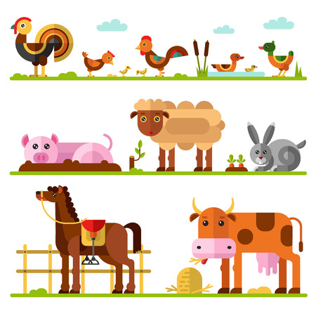 aviary: Flat vector geometric illustration set of farm or domestic animals. Turkey, hen and rooster with chicks, family of ducks, goose, pig in puddle of mud, sheep, rabbit and carrots, cow, horse in paddock