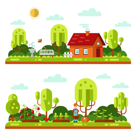 garden peas: Flat design vector landscape illustrations with farm house, bench, fountain, birds. Garden with beds of carrots, peas, tomatoes, pumpkin, gardener. Farming, agricultural, organic products concept. Illustration