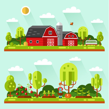 garden peas: Flat design vector landscape illustrations with farm building, barn. Garden with beds of carrots, peas, tomatoes, pumpkin. Gardener with basket. Farming, agricultural, organic products concept. Illustration