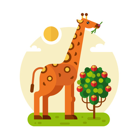 Flat design geometric illustration of cute giraffe eating leaves of the bush or three with fruits. Including sun, grass, clouds. Animal in the wild nature concept.