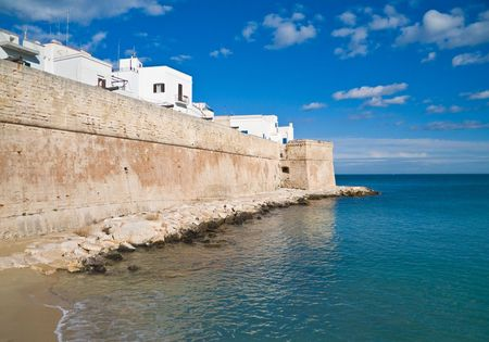 breakwaters: Tourism: these are the ancient walls of Monopoli, a village in province of Bari, in Apulia.