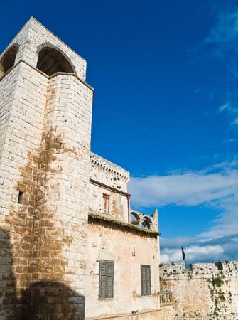 historian: Tourism: This is the Aragonese castle of Carlo V in Conversano, ancient village in Apulia.
