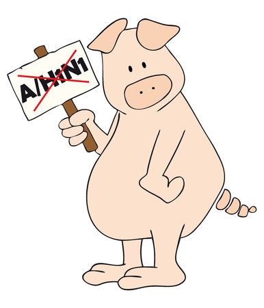 sintoma: Vector: This is a pig with AH1N1 placard in the hand.
