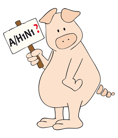 ah1n1: Vector: This is a pig AH1N1 placard in the hand. Illustration