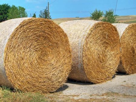 Rolling haystack. photo
