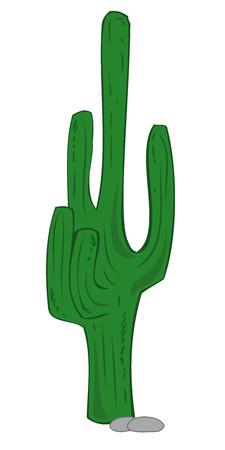thorn bush: Green Cactus.