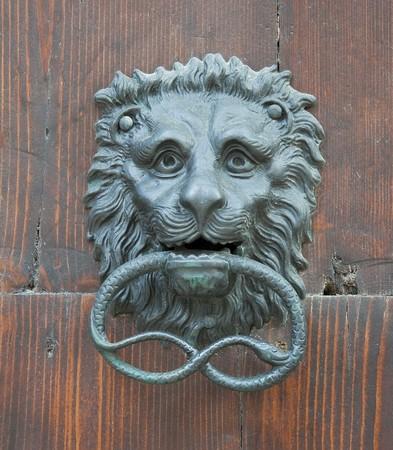 knocker: Lion Head Doorknocker.