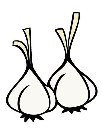 Cloves of garlic. Vector
