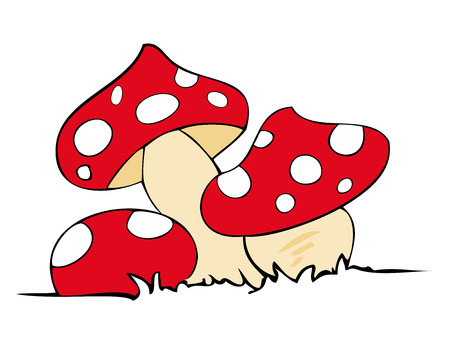 toadstool: Red poison mushrooms.