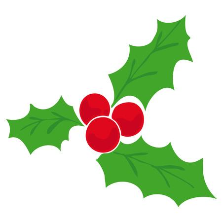 a bough: Mistletoe.