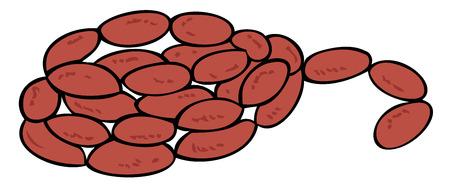 lard: Sausage. Illustration