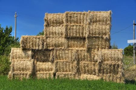 Haystacks bales in countryside. photo