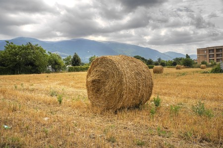 Rolling haystacks in countryside. photo
