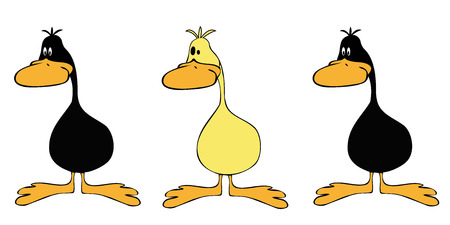 Ducks line up. Vector
