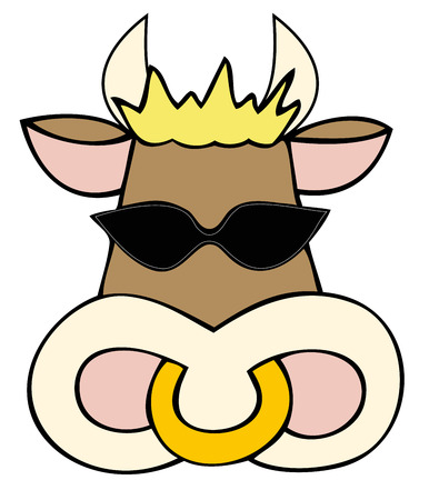 bellow: Dairy cow face with sunglasses.